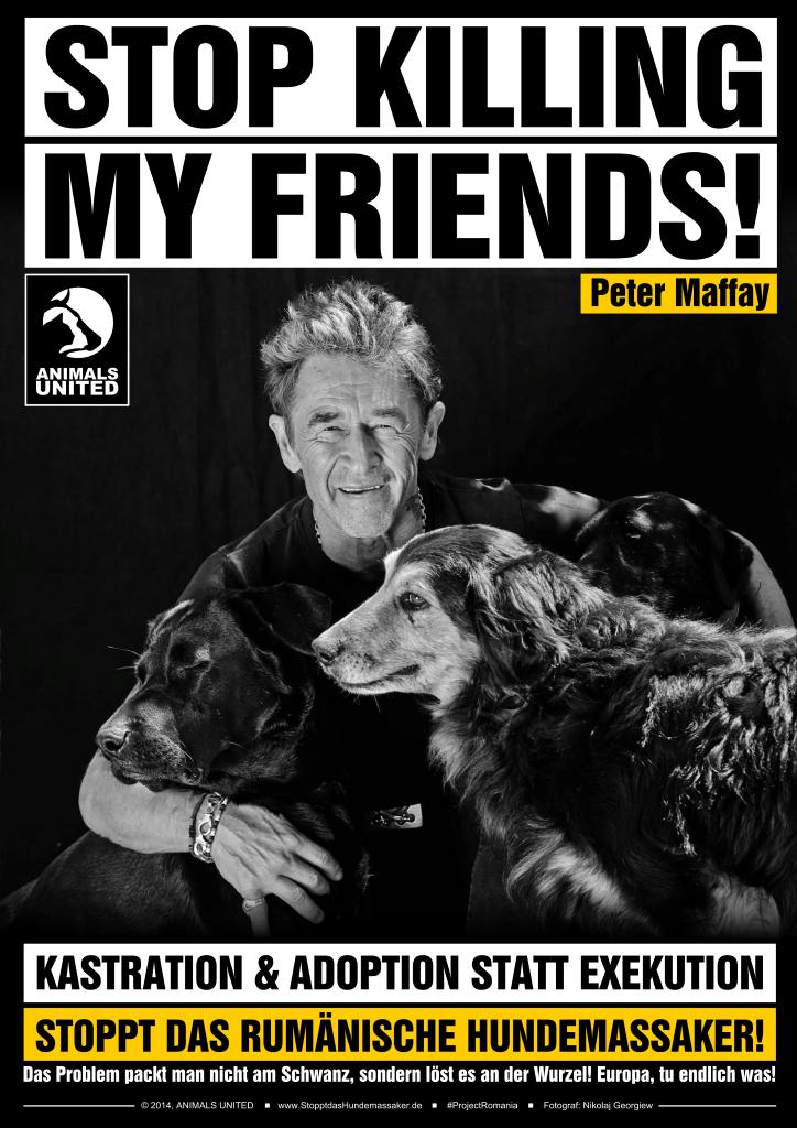 Peter Maffay gegen das Hundemassaker